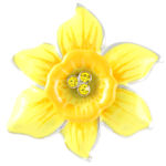 Daffodil Jewellery from Angelys