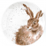 Royal Worcester Wrendale Designs - Coupe Plate 16.5cm 6.5in - Hare