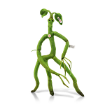 Steiff Bowtruckle from 'Fantastic Beasts' - Limited Edition