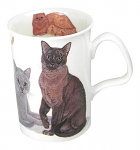 Roy Kirkham Lancaster Mug Cats Galore
