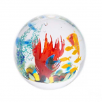 Caithness Glass Paperweight Abstract Ocean The Coral Sea - Limited Edition of 150