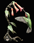 Bronze Hand Painted Hummingbird - In Wooden Box Limited Edition 150