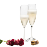 Galway Crystal Elegance Prosecco or Champagne Set of 2