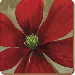 Flower Study - Creative Tops  6 Premium Coasters