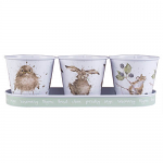 Wrendale Designs - Herb Pots & Tray