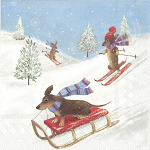 IHR - Napkins - Cocktail - Racing Dogs Snow Skiing