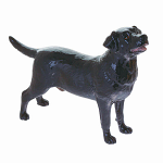 Beswick Labrador Dog Black
