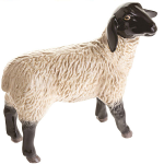 Beswick - Suffolk Lamb
