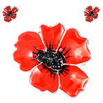 Poppy Brooch - Enamel Poppy Pin Large 40mm and Stud Earrings