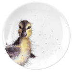 Royal Worcester Wrendale Designs - Coupe Plate 16.5cm 6.5inch - Duckling