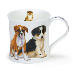 Dunoon Wessex Shape Mug - Puppies Boxer & Others - Boxed