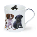 Dunoon Wessex Shape Mug - Puppies Springer Spaniel & Others - Boxed