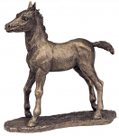 Frith Sculpture - Missy - Standing Foal Bronze