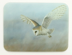 Robert Fuller - Barn Owl on Lookout Glass Work Top Saver