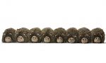 Draught Excluder - Bertie Bristles Family of 8 Hedgehogs in a Row