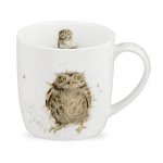 Royal Worcester Wrendale Designs - Mug - Owl - What a Hoot